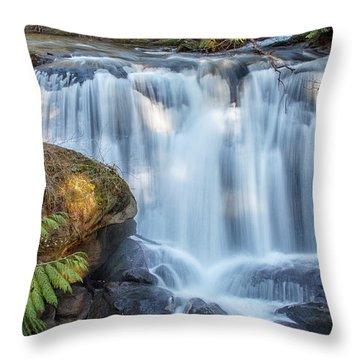 Whatcome Falls Throw Pillow