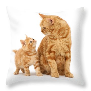 Throw Pillow featuring the photograph What's For Dinner, Mum by Warren Photographic