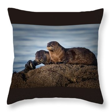 Throw Pillow featuring the photograph Whats For Dinner by Randy Hall