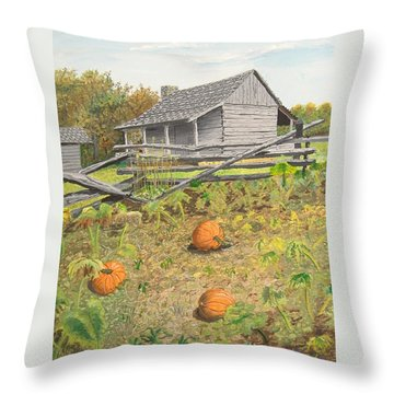 What's Left Of The Old Homestead Throw Pillow by Norm Starks