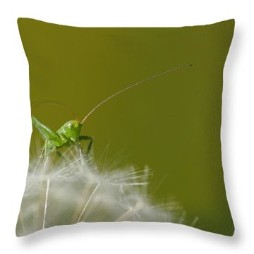 Throw Pillow featuring the photograph What's The Time.... by Richard Patmore