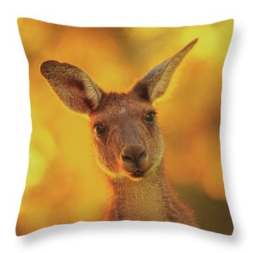 What's Up, Yanchep National Park Throw Pillow by Dave Catley