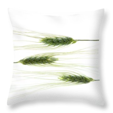 Throw Pillow featuring the photograph Wheat 3 by Rebecca Cozart