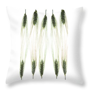 Throw Pillow featuring the photograph Wheat 4 by Rebecca Cozart