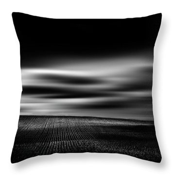 Throw Pillow featuring the photograph Wheat Abstract by Dan Jurak