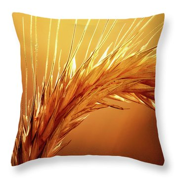 Close Up Throw Pillows