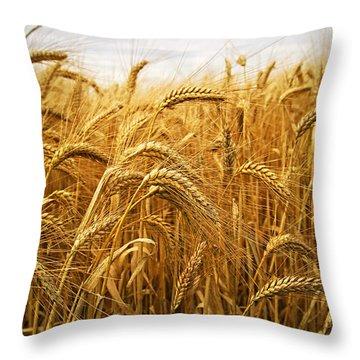 Wheat Throw Pillow by Elena Elisseeva
