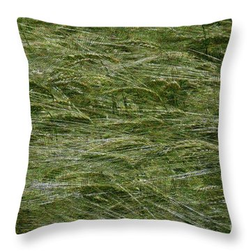 Throw Pillow featuring the photograph Wheat Field by Jean Bernard Roussilhe