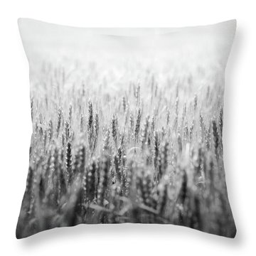 Wheat Field Throw Pillow