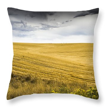 Wheat Fields With Storm Throw Pillow by John Trax