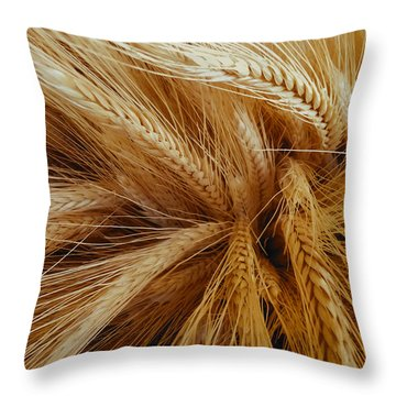 Wheat In The Sunset Throw Pillow