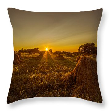 Throw Pillow featuring the photograph Wheat Shocks by Chris Bordeleau