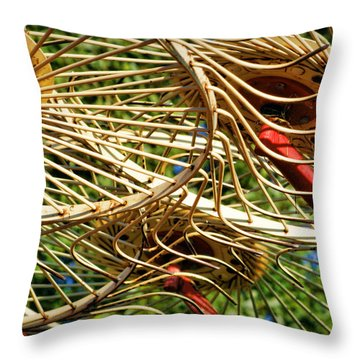 Wheel Rake Abstract Throw Pillow