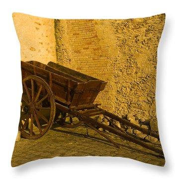 Wheelbarrow Throw Pillow by Sebastian Musial