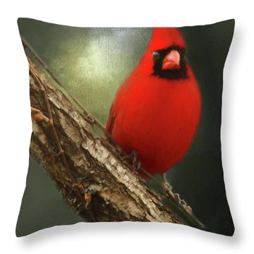 Throw Pillow featuring the photograph When Angels Are Near by Darren Fisher