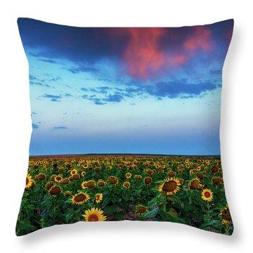 Throw Pillow featuring the photograph When Clouds Dance by John De Bord