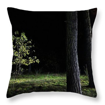 Throw Pillow featuring the photograph When First Leaves Start To Fall - Autumn by Dirk Ercken