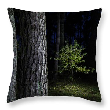 Throw Pillow featuring the photograph When First Leaves Start To Fall by Dirk Ercken