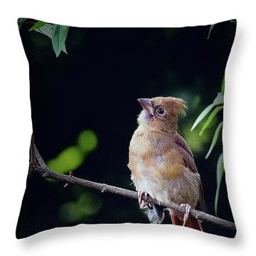 When God Speaks Throw Pillow