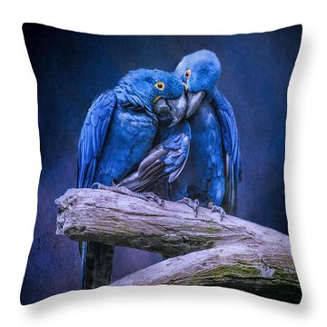 When I'm Feeling Blue Throw Pillow by Brian Tarr