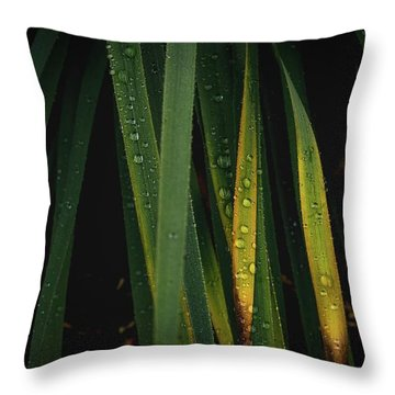 When It Rains Throw Pillow