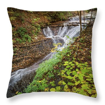 Throw Pillow featuring the photograph When The Leaves Fall by Dale Kincaid