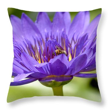 When The Lily Blooms Throw Pillow