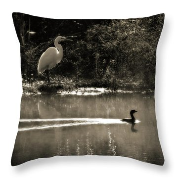 When The Morning Fog Lifted Throw Pillow