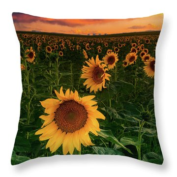 When The Sky Sings Throw Pillow