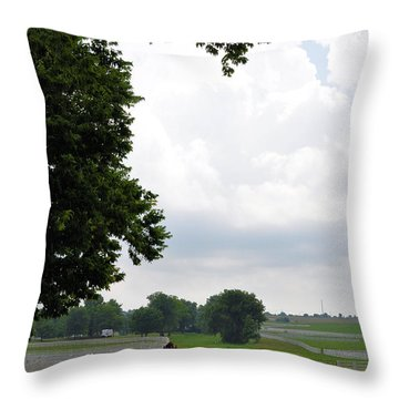 When The Winds Begin To Sing Throw Pillow
