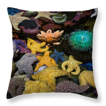 When There Were Many Throw Pillow