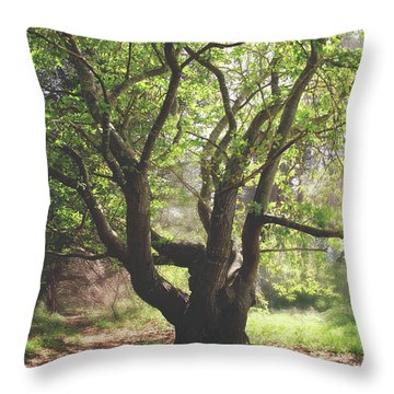 Throw Pillow featuring the photograph When You Need Shelter by Laurie Search