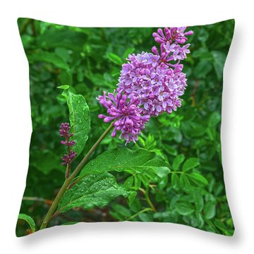 When You Need Someone To Belive In, Start With Yourself.  Throw Pillow