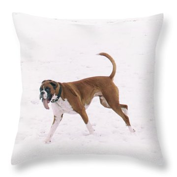 White Boxer Dog Throw Pillows