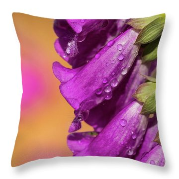 Where Color Grows Throw Pillow