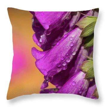 Where Color Grows Throw Pillow