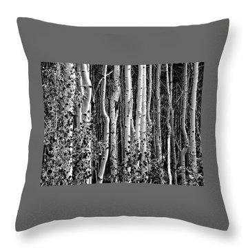 Where Throw Pillow by David Gilbert