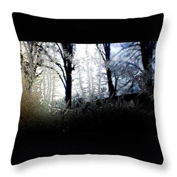 Where Dawn And Dusk Meet Throw Pillow by Danielle R T Haney