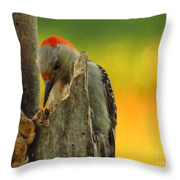 Where Did It Go Throw Pillow