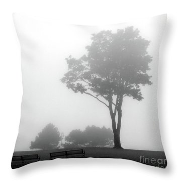 Throw Pillow featuring the photograph Where Do I Go When It's Gone by Dana DiPasquale