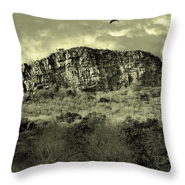 Where Eagle Dare-ii Throw Pillow