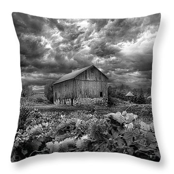 Where Ghosts Of Old Dwell And Hold Throw Pillow