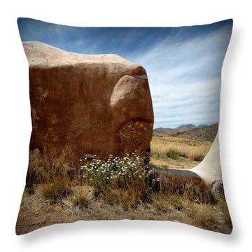 Throw Pillow featuring the photograph Where Have All The Flowers Gone by Joe Kozlowski