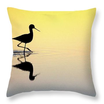 Throw Pillow featuring the photograph Where Is Dinner? by Quality HDR Photography
