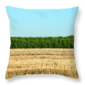 Where Land And Sky Meet Throw Pillow