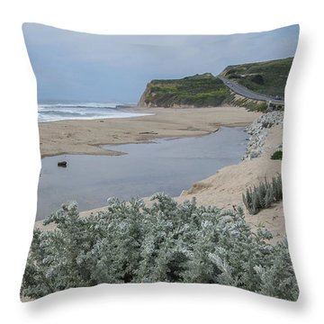Where Scott Creek Meets The Ocean Throw Pillow