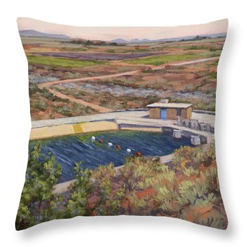 Where The Aqueduct Goes Underground Throw Pillow