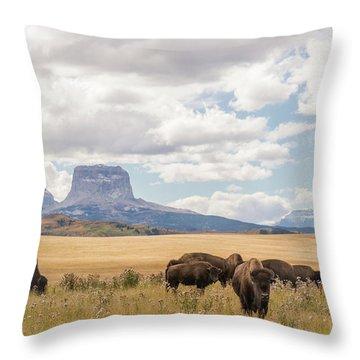 Where The Buffalo Roam Throw Pillow by Alex Lapidus