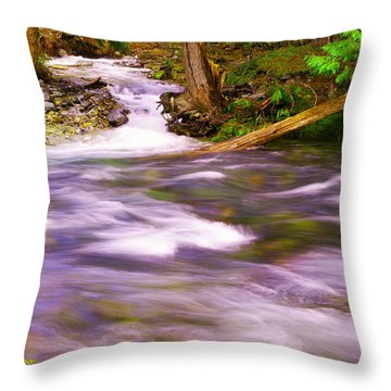Throw Pillow featuring the photograph Where The Stream Meets The River by Jeff Swan