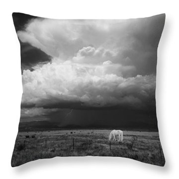Where The Wild Horses Are Throw Pillow by Carolyn Dalessandro
